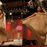 Bridal Couture Week Karachi Day 3 (11)
