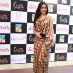 1st Hum TV Awards Redcarpet - 29