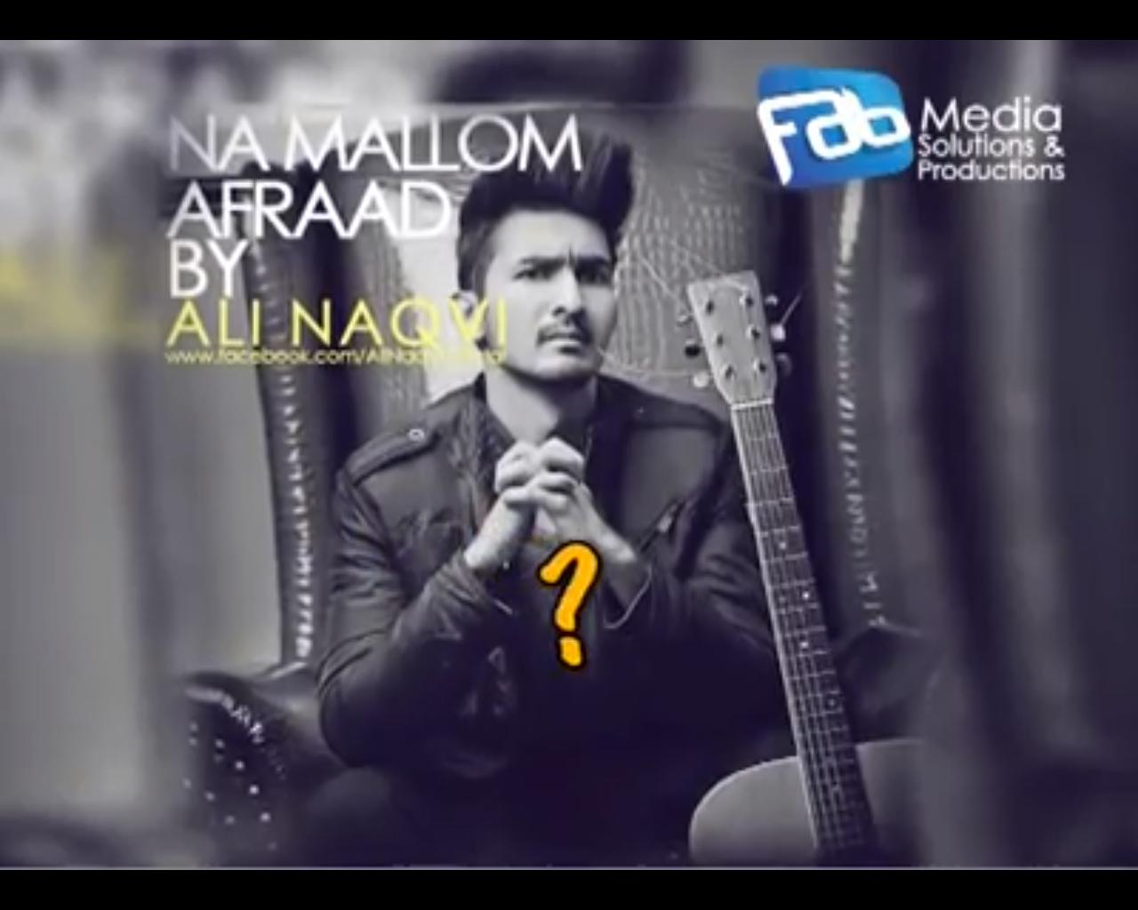 Ali Naqvi - Na Mallom Afraad (Audio Song)