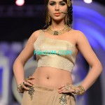 Nadia-Chotani-Bridal-Couture-Week-2013 (5)