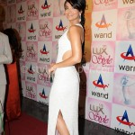 Aamina Sheikh at Lux Style Awards 2013 (Redcarpet)