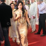 Meera at Lux Style Awards 2013 (Redcarpet)